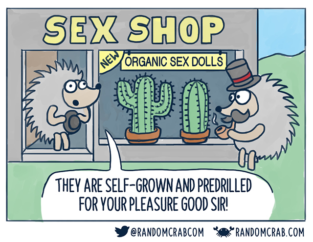 Hedgehog sex shop